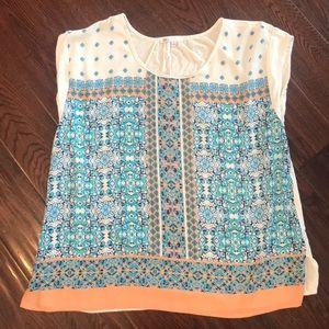 Sheer/knit top